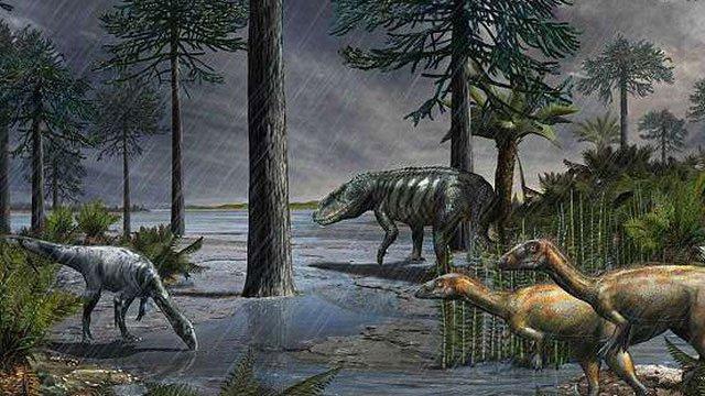 234 triệu năm trước, có một trận mưa kéo dài 2 triệu năm - Cảnh giác với thảm họa lặp lại!