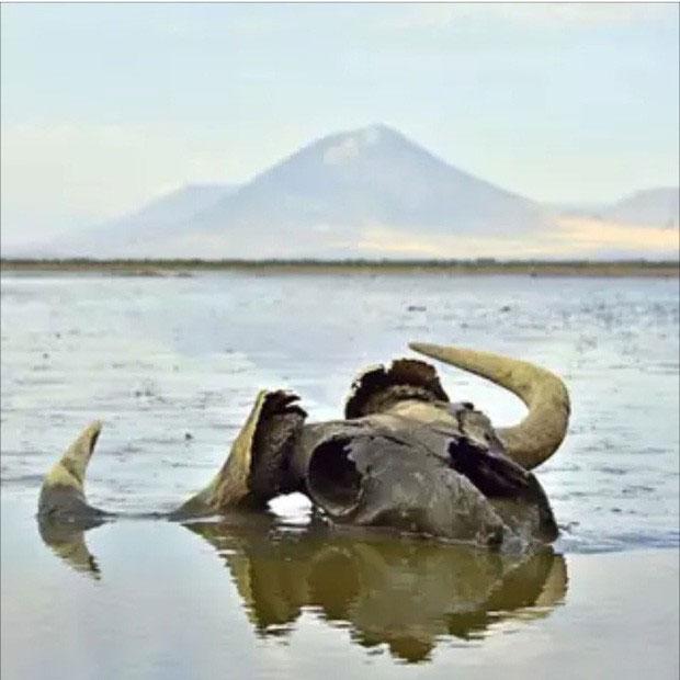 4 hồ nước bí ẩn nhất thế giới: Cái thì mơ mộng nên thơ, nơi thì chứa hàng trăm bộ xương người