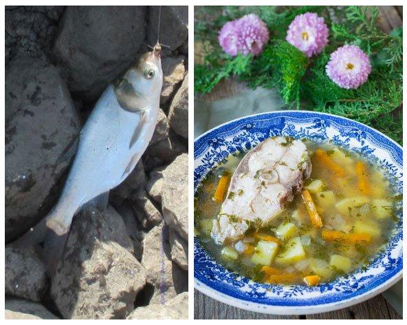 5 loại cá bổ dưỡng mà giá lại rẻ, ăn đúng vào mùa thu thì tốt gấp bội cho sức khỏe