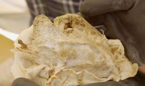 56 chiếc lọ trong lăng mộ của tể tướng Ai Cập chứa bí mật kinh người