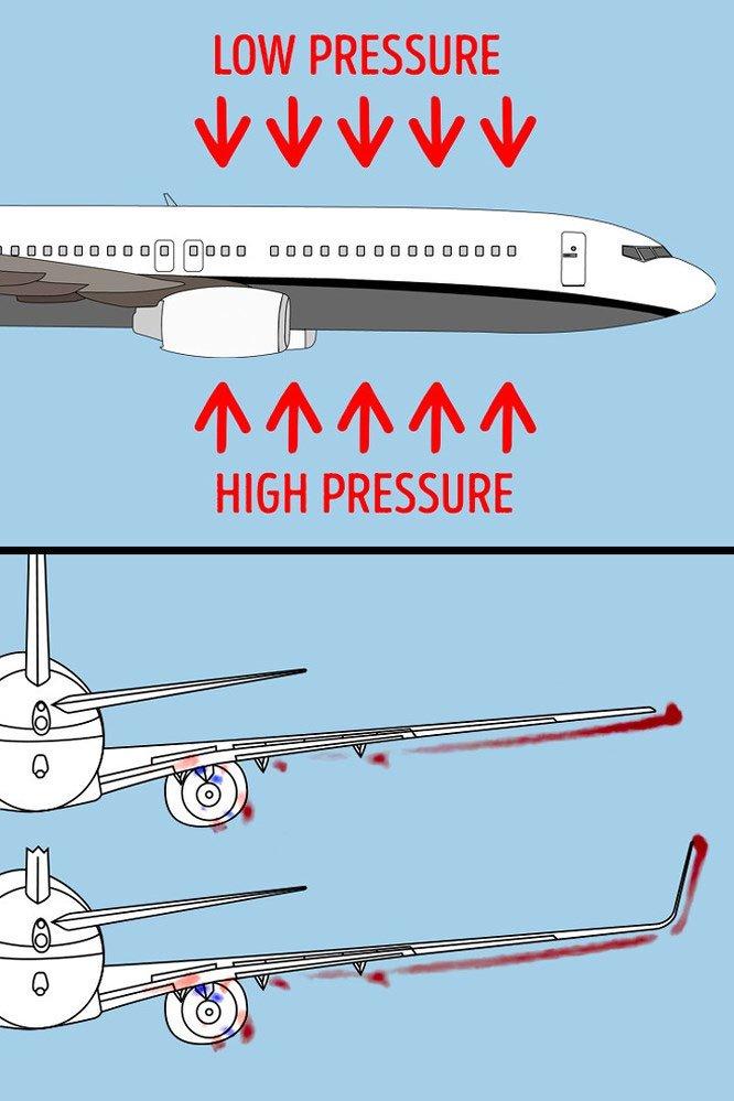 8 sự thật về hàng không có thể bạn chưa biết