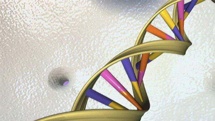 ADN mang dấu ấn virus cổ xưa có khả năng tiêu diệt ung thư