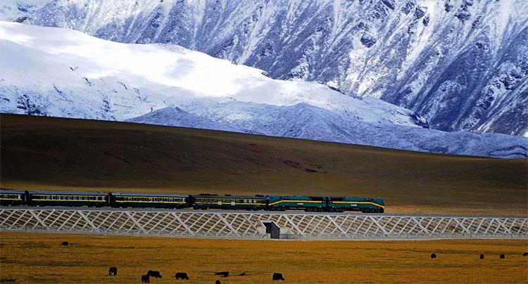 Ấn Độ chuẩn bị xây đường sắt cao nhất thế giới