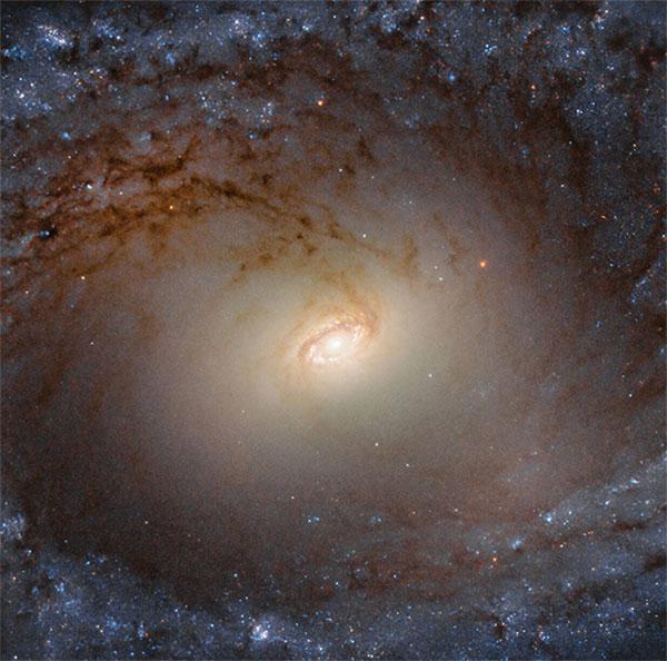 Ảnh chụp cận cảnh thiên hà cách xa 85 triệu năm ánh sáng
