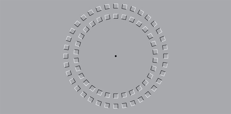 Ảo ảnh thị giác nổi tiếng này thực sự khiến não đơ theo đúng nghĩa đen