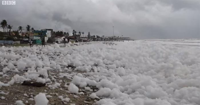 Bãi biển Ấn Độ phủ bọt trắng xóa do ô nhiễm