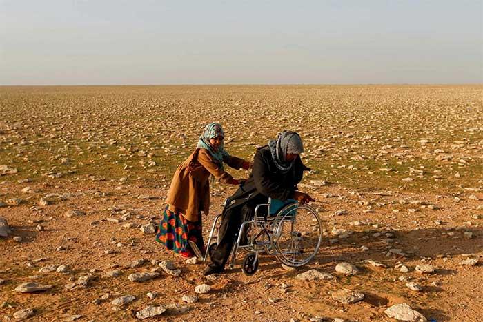 Bất chấp nguy hiểm, người Iraq liều mạng để săn nấm trên sa mạc