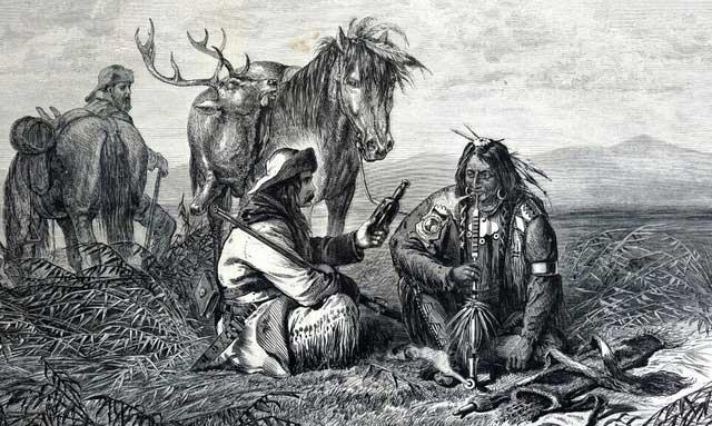 Bất ngờ loài cây đầu tiên người tiền sử thuần dưỡng