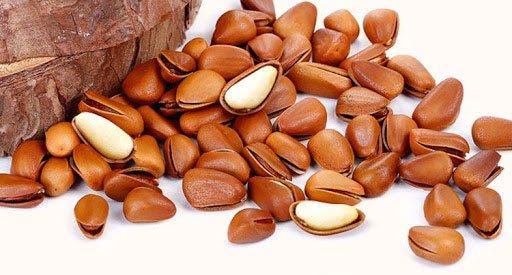 Bất ngờ với những lợi ích sức khỏe của hạt thông