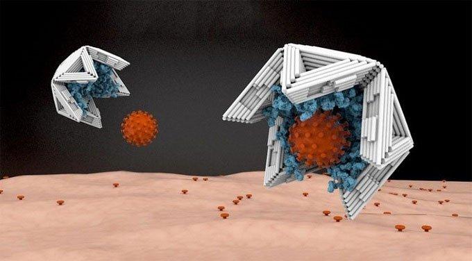 Bẫy kích thước nano vô hiệu hóa virus truyền nhiễm