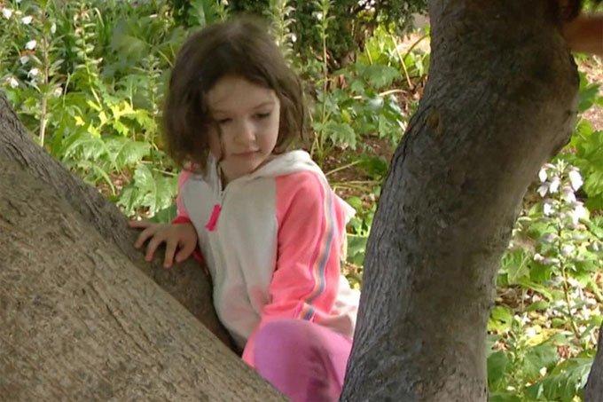 Bé gái bốn tuổi phát hiện loài ong tưởng đã tuyệt chủng