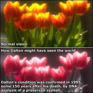 Bệnh mù màu có phải là một siêu năng lực đi kèm với sự đánh đổi?
