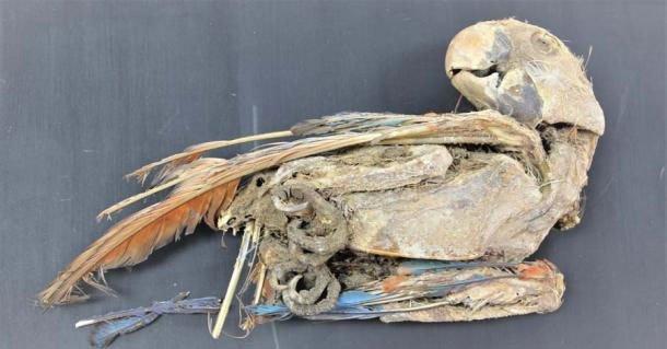 Bí ẩn 27 xác ướp không phải con người, đầy màu sắc ở nghĩa trang 3.500 tuổi