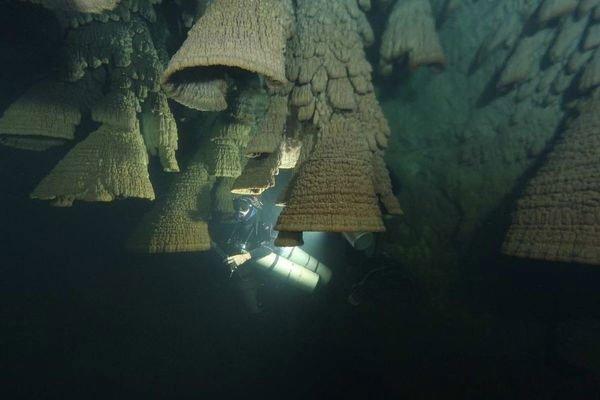 Bí ẩn hang động chứa đầy chuông tử thần ở Mexico