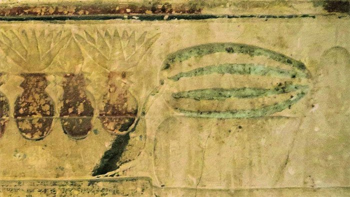 Bí ẩn về nguồn gốc của dưa hấu có thể đã được giải đáp