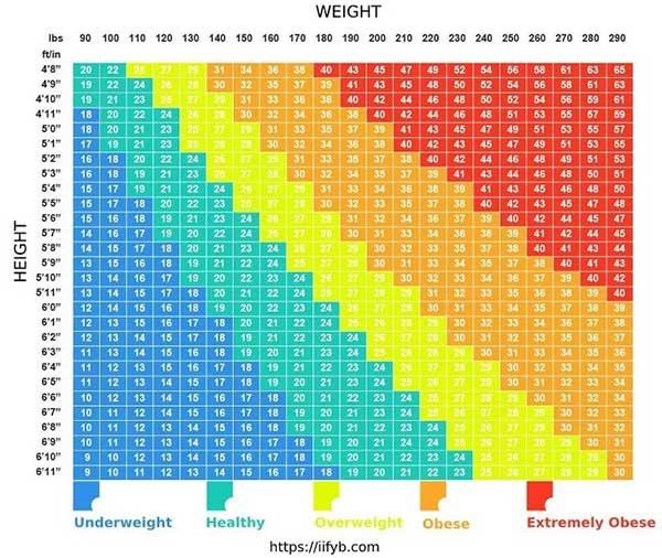 BMI và tỉ lệ mỡ: Chỉ có một trong 2 chỉ số này thực sự quan trọng