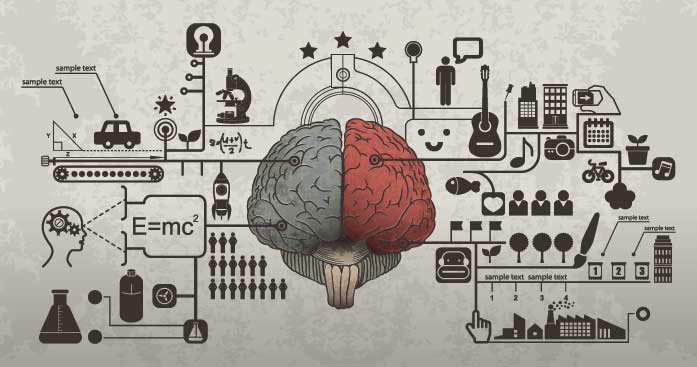 Bộ não của chúng ta có dung lượng bao nhiêu, và nó có thể bị đầy không?