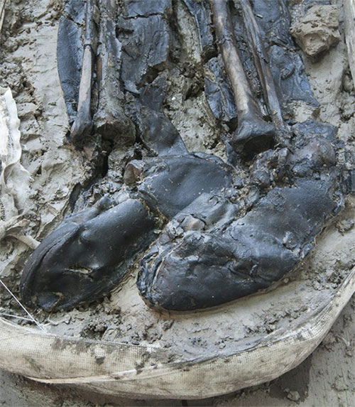 Bộ xương bí ẩn mang bốt da dưới lòng sông Thames