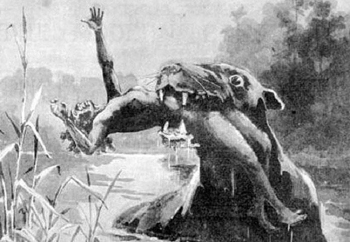 Bunyip - Loài quái vật đã tuyệt chủng ở Australia