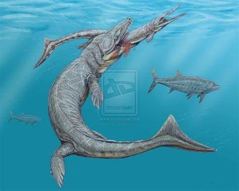 Cá sấu tiền sử dưới đại dương chỉ cần một cú đớp cũng có thể làm thủng bụng ngư long
