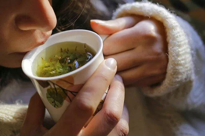 Các bài thuốc thảo dược chữa đau họng ho khan