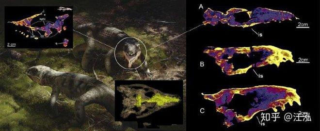 Các nhà cổ sinh vật học phát hiện ra loài bò sát lắm mồm nhất kỷ Phấn trắng