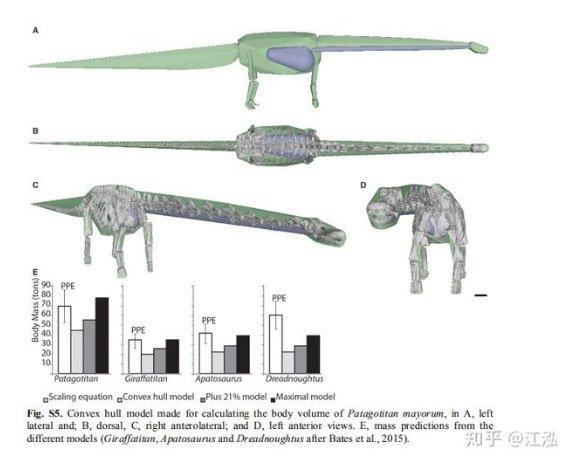 Các nhà cổ sinh vật học tính trọng lượng của khủng long như thế nào?