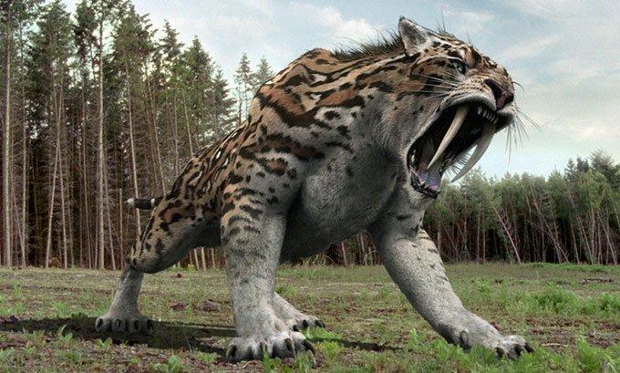 Các nhà khoa học phát hiện loài thú răng kiếm ăn thực vật