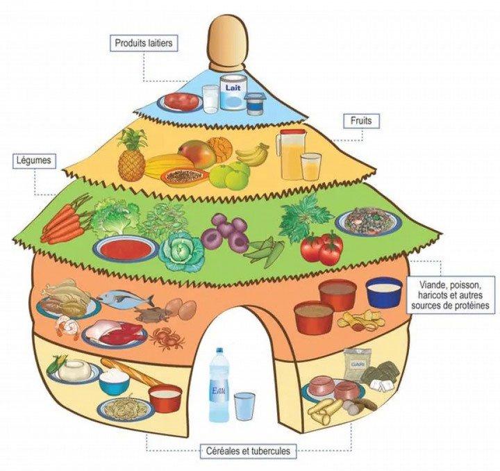 Các nước trên thế giới hướng dẫn người dân ăn uống lành mạnh như thế nào?
