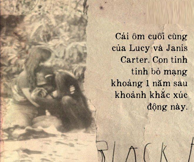 Câu chuyện đau lòng về Lucy, con tinh tinh đã tưởng mình là người