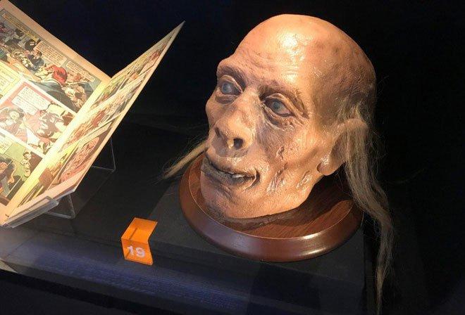 Câu chuyện về những thứ kỳ quái nhất từng được đem ra trưng bày trong bảo tàng