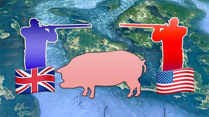 Câu chuyện về Pig War: Con lợn dẫn đếnnguy cơ gây đại chiến giữa 2 cường quốc