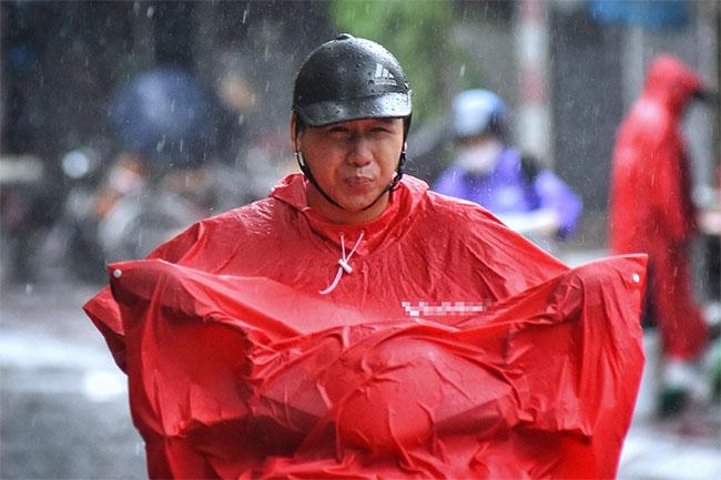 Cây đổ hàng loạt ở Hà Nội, Hải Phòng sau bão Wipha