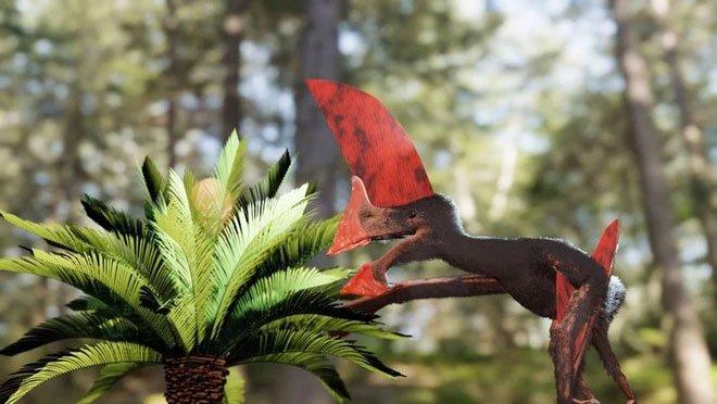 Chán bắt ma túy, cảnh sát Brazil chuyển sang săn hóa thạch rồi phát hiện ra loài khủng long bay kỳ dị
