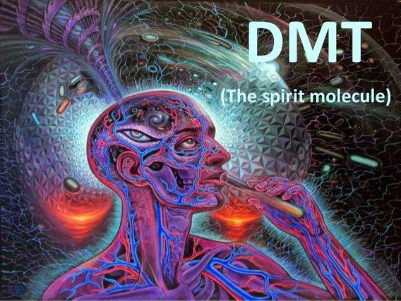 Chất thức thần DMT là gì? Nó có thực sự đem lại các lợi ích về tâm linh như nhiều người nghĩ?
