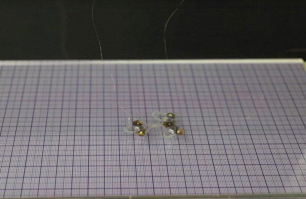 Chế tạo robot ruồi siêu nhỏ có thể theo dõi mọi ngóc ngách