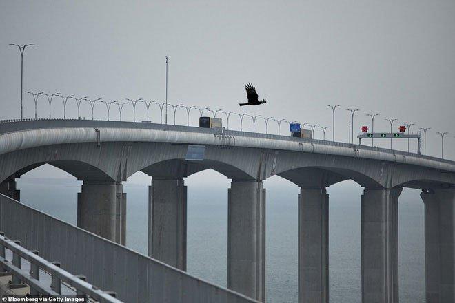 Chiêm ngưỡng cầu vượt biển dài nhất thế giới: 55km, 18 tỷ USD kinh phí tại Trung Quốc