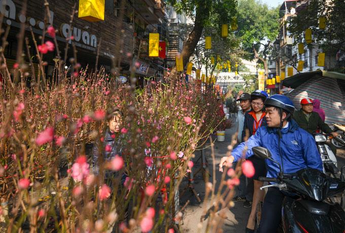 Chợ hoa Hà Nội chỉ họp một lần trong năm vào dịp Tết