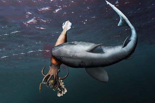 Chờ thủy quái mải mê săn mồi, cá mập lao ra đánh úp rồi làm thịt