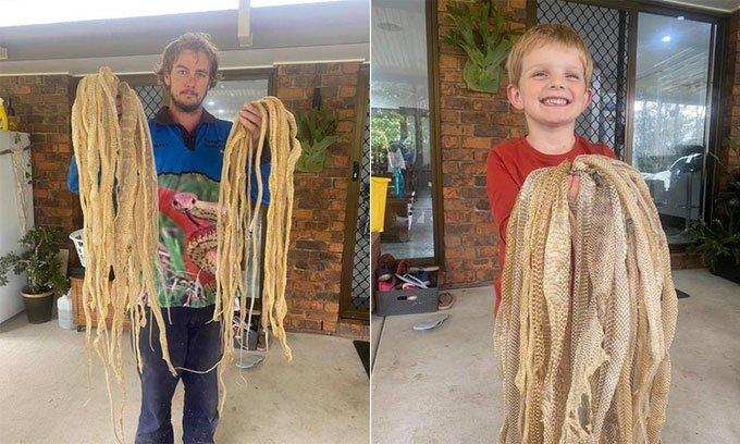 Choáng váng khi phát hiện 50 bộ da rắn trên mái nhà dân