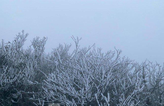 Chùm ảnh: Băng tuyết phủ trắng đỉnh Mẫu Sơn