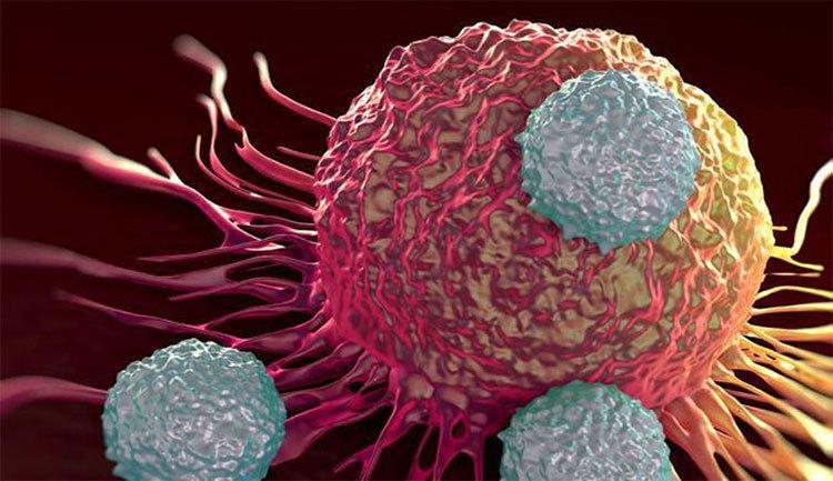 Chúng ta đã đến gần với thuốc chữa ung thư?