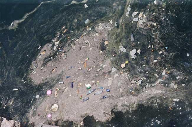 Chúng ta đang sống giữa những đại dương rác thải
