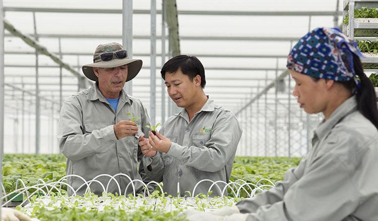 Chuyên gia Nhật bày cách nâng thu nhập cho nông dân Việt