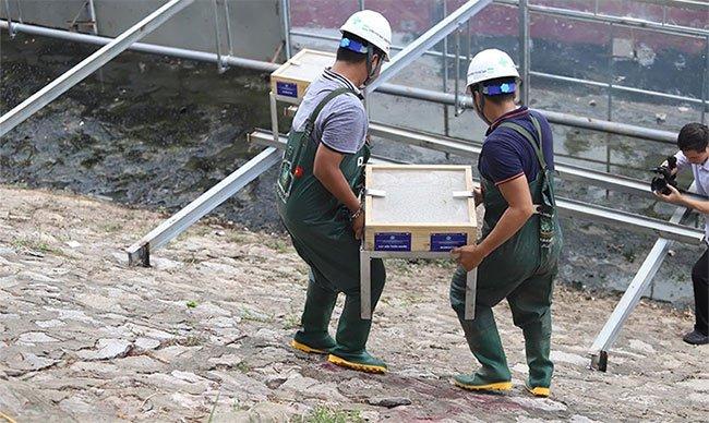Chuyên gia Nhật tính kế không để nước cuốn trôi kết quả sông Tô Lịch