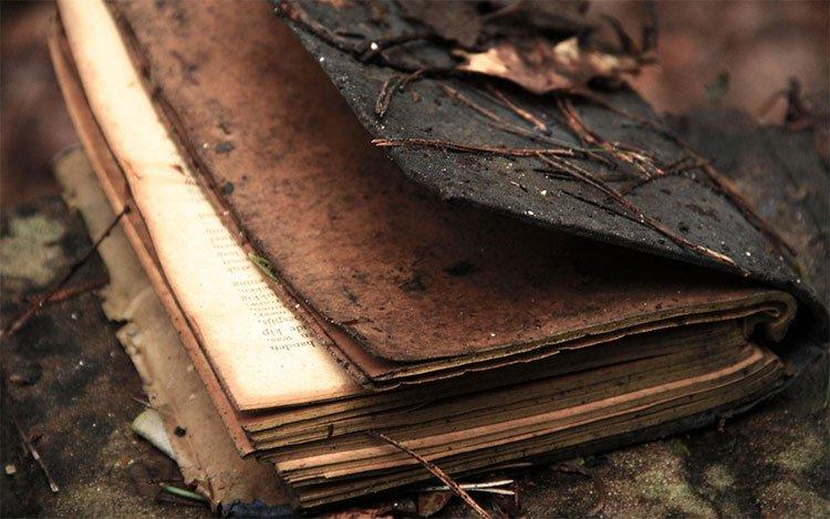 Chuyện kinh hoàng về cuốn sách giết người: Làn sóng tự tử vì đọc sách