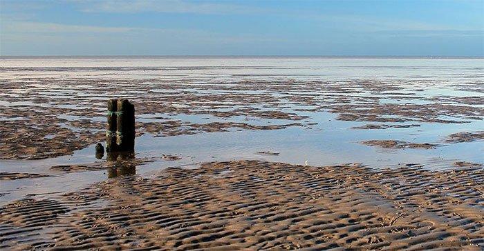 Có gì thú vị tại bãi biển Wadden biến mất 2 lần 1 ngày ở Hà Lan?