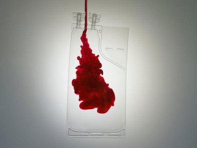 Cô máu thành dạng bột pha như sữa, giúp bảo quản được lâu và tiện dụng hơn