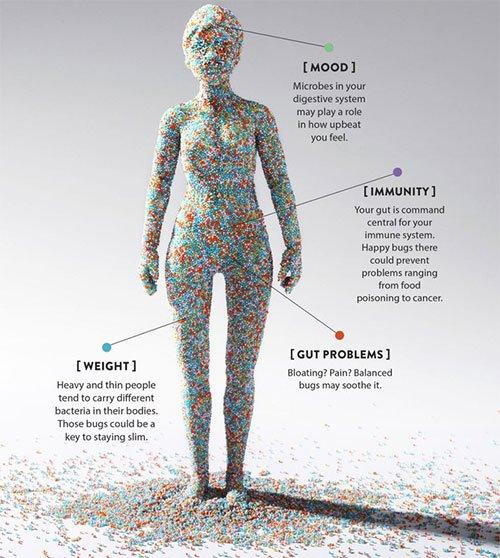 Cơ thể mỗi chúng ta đang chứa 380 nghìn tỷ con virus, chúng đang làm gì trong đó?