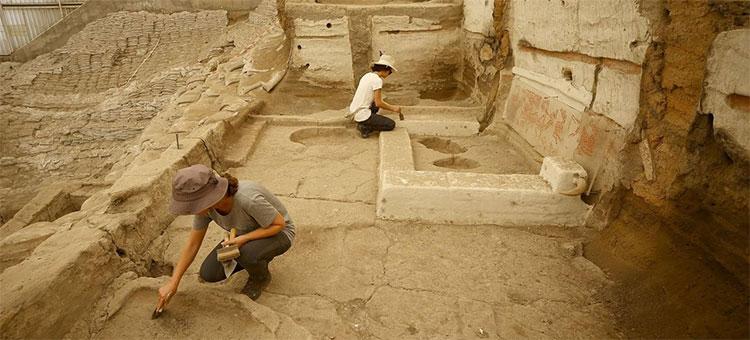 Con người đã ăn gì từ 8.000 năm trước?